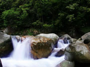 卧龙谷瀑布